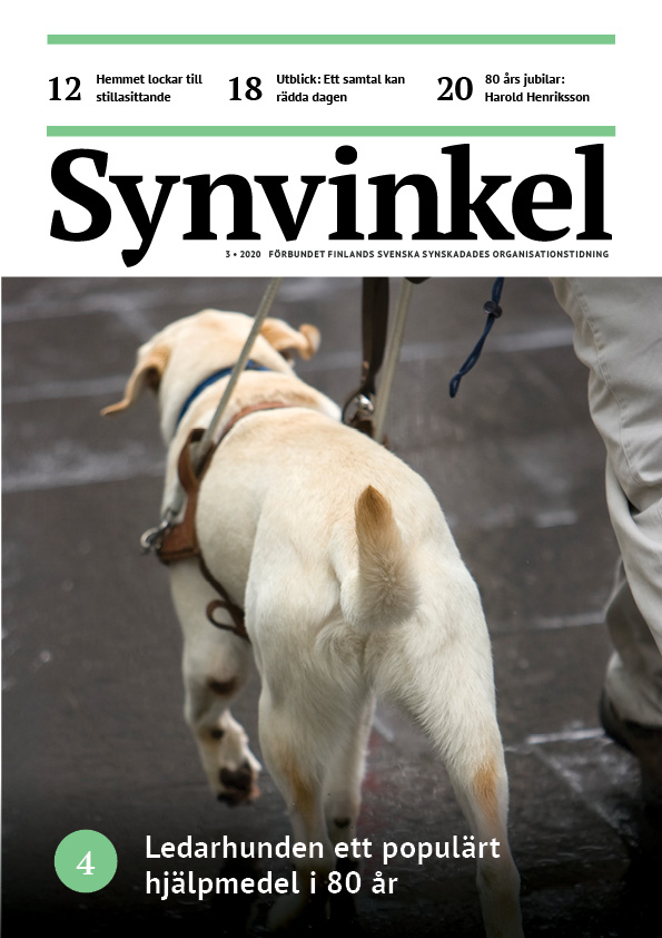 Pärmbild på Synvinkel 3/2020. En vit ledarhund i sele.
